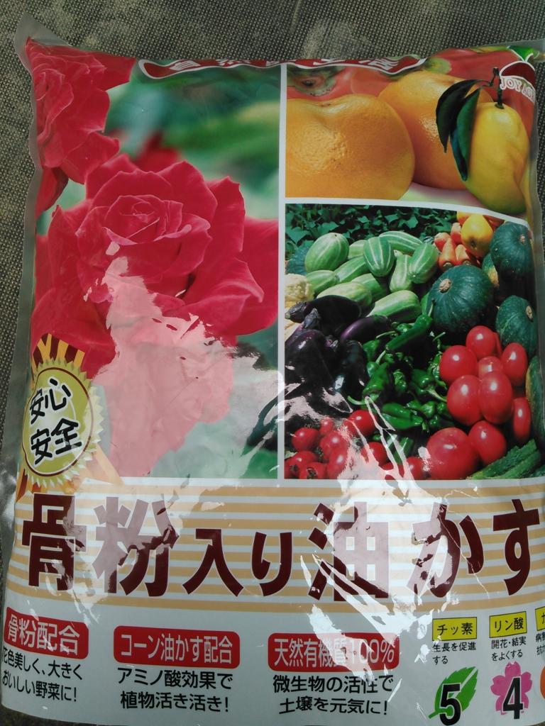 f:id:yasaibatake:20160705183611j:plain
