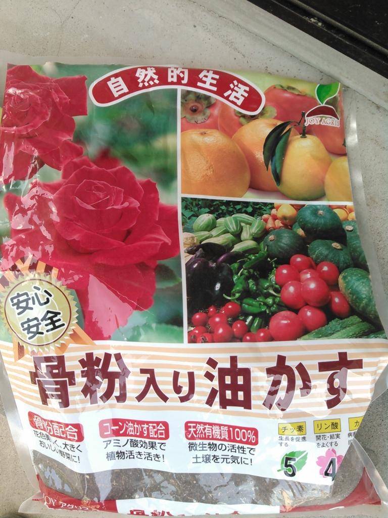 f:id:yasaibatake:20160804114904j:plain