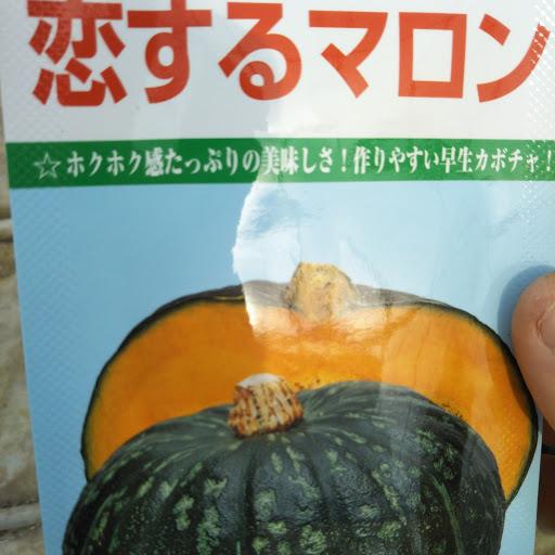 f:id:yasaibatake:20170418195117j:plain