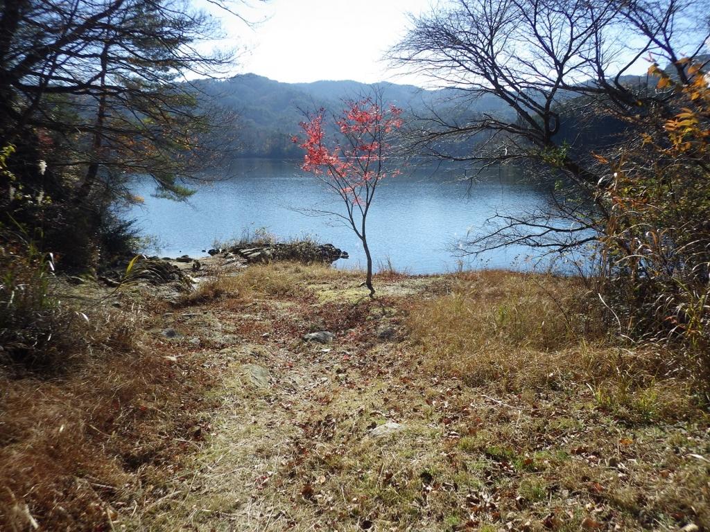 f:id:yasaigun:20161206181612j:plain