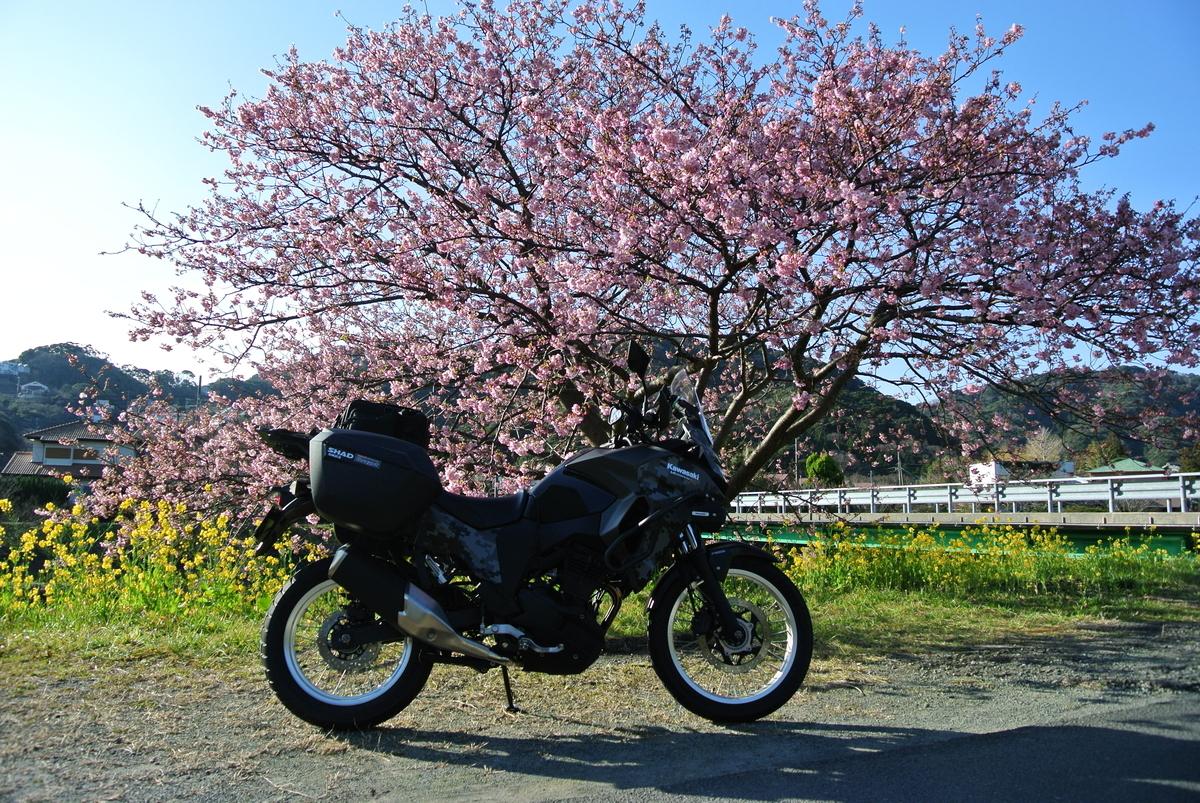 f:id:yasaigun:20200208203332j:plain