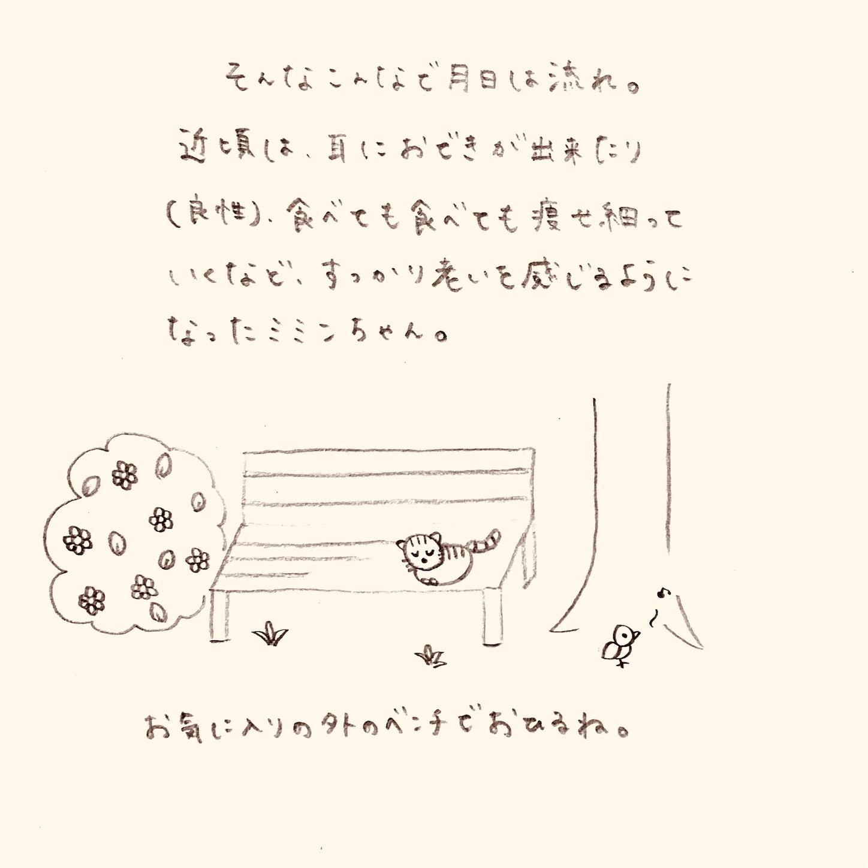 f:id:yasaiparis:20200210220225j:image