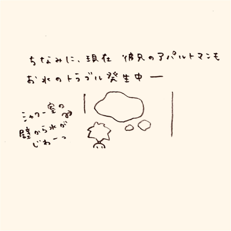 f:id:yasaiparis:20201119052658j:image