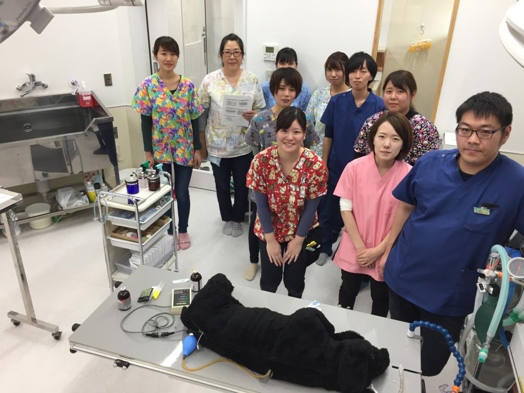 f:id:yasaka-ah:20171101153916j:plain