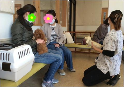 f:id:yasaka-ah:20201105115125j:plain
