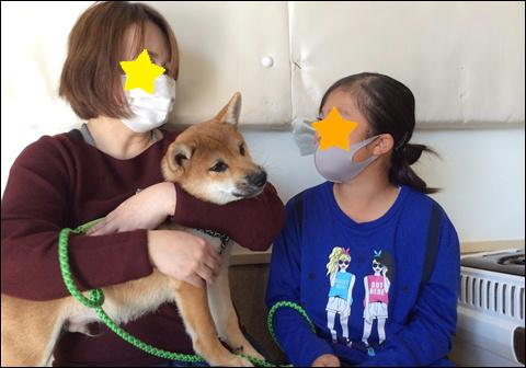 f:id:yasaka-ah:20201105173714j:plain