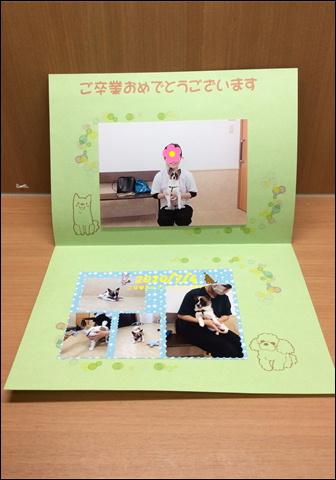 f:id:yasaka-ah:20201114185105j:plain