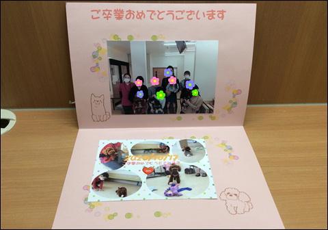 f:id:yasaka-ah:20201115115543j:plain