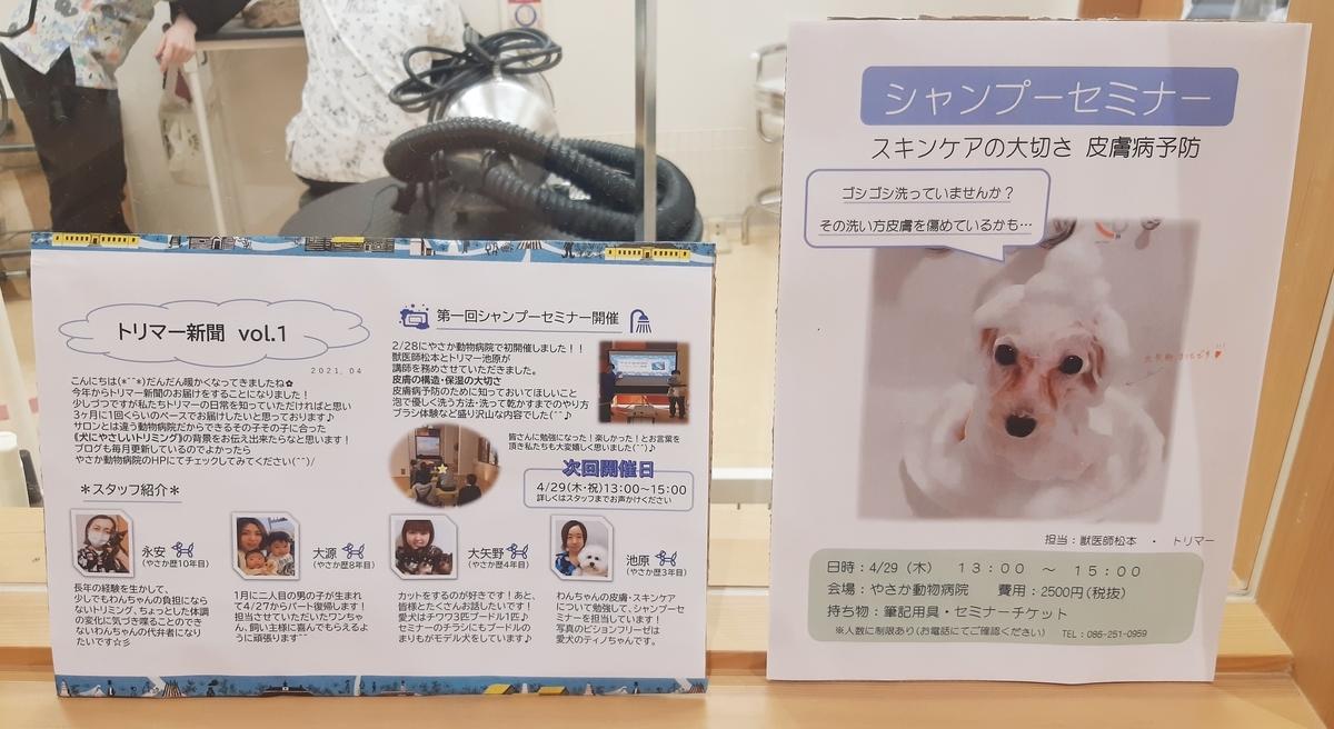 f:id:yasaka-ah:20210420181801j:plain