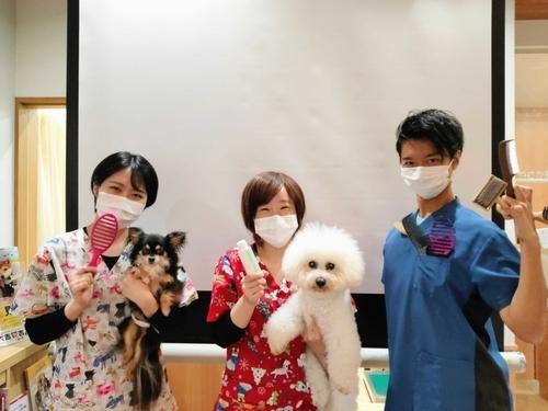 f:id:yasaka-ah:20210708121039j:plain
