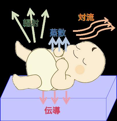 f:id:yasashi-kiki:20180816143533p:plain