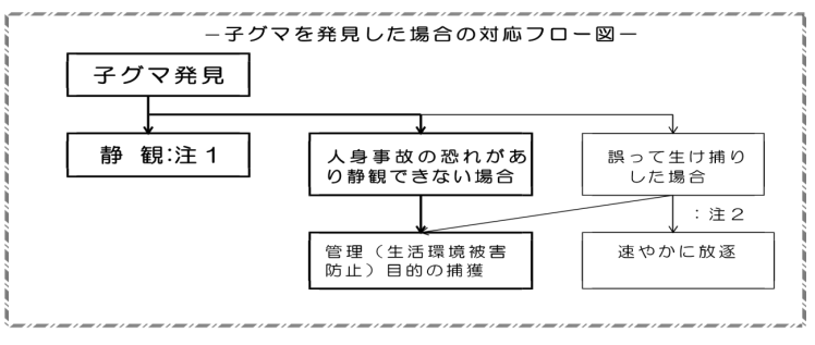 f:id:yasei_doubutu:20210222191353p:plain