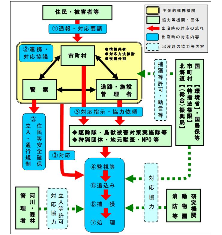 f:id:yasei_doubutu:20210222200744p:plain