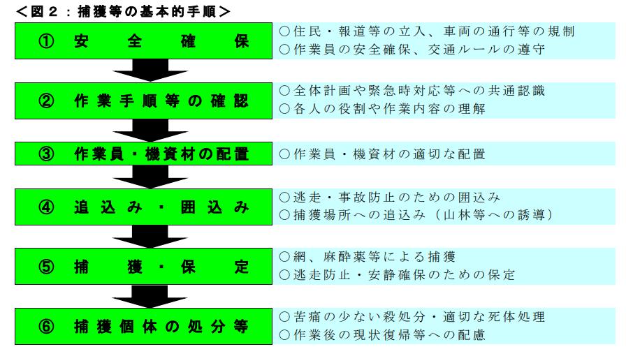 f:id:yasei_doubutu:20210222202313p:plain