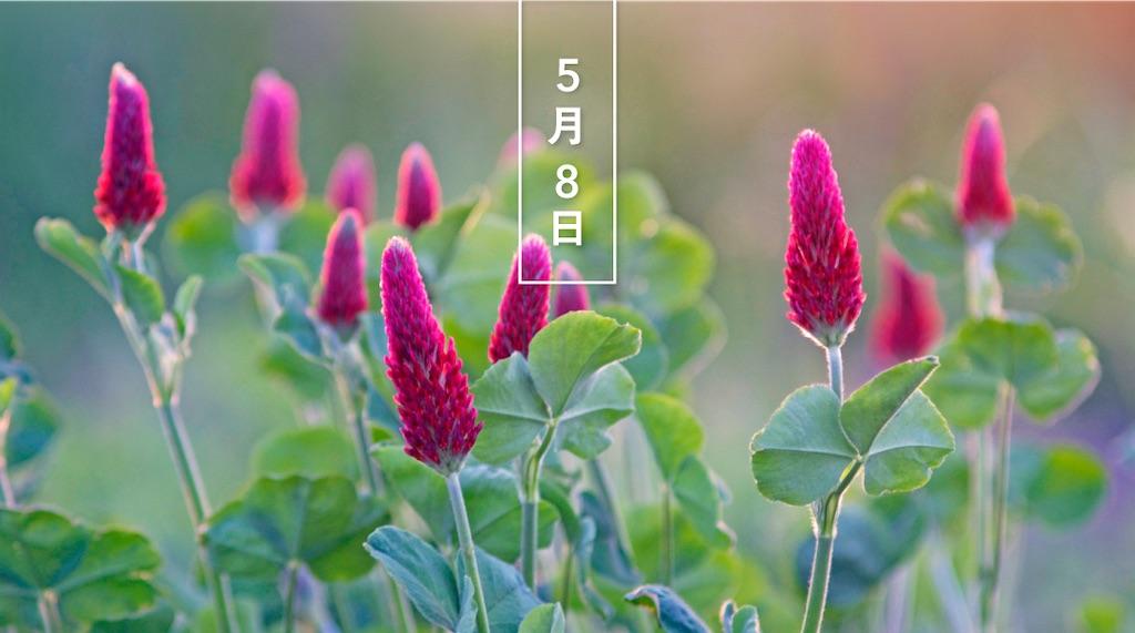 f:id:yashahimeko:20210508195130j:image