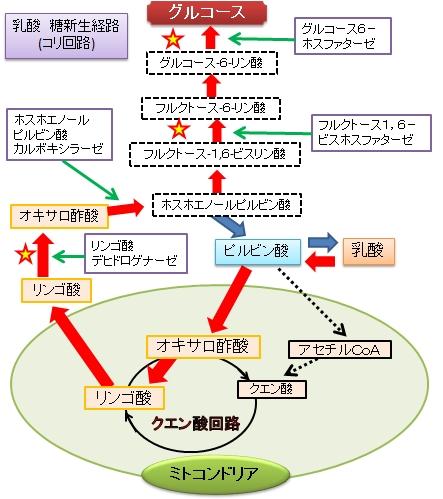 f:id:yashiki5296:20160617001207p:plain