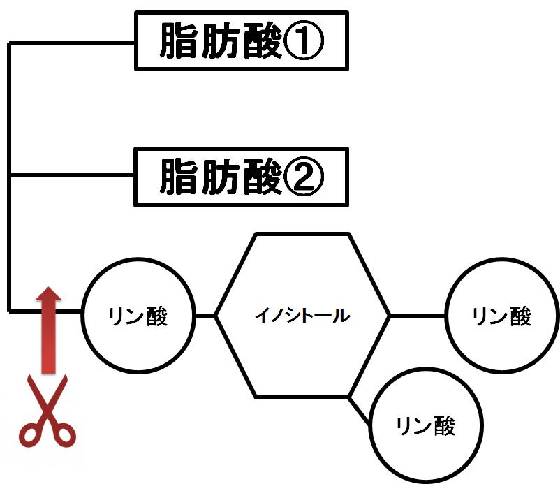 f:id:yashiki5296:20170119023908p:plain