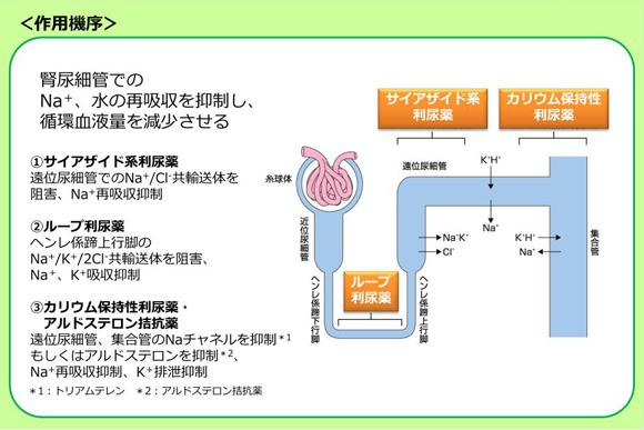 f:id:yashiki5296:20170202125158p:plain