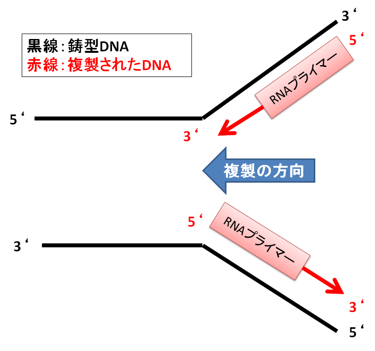 f:id:yashiki5296:20170522183827p:plain