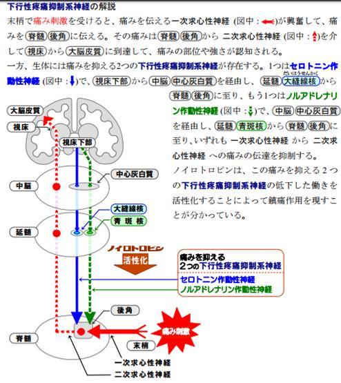 f:id:yashiki5296:20170701211810p:plain
