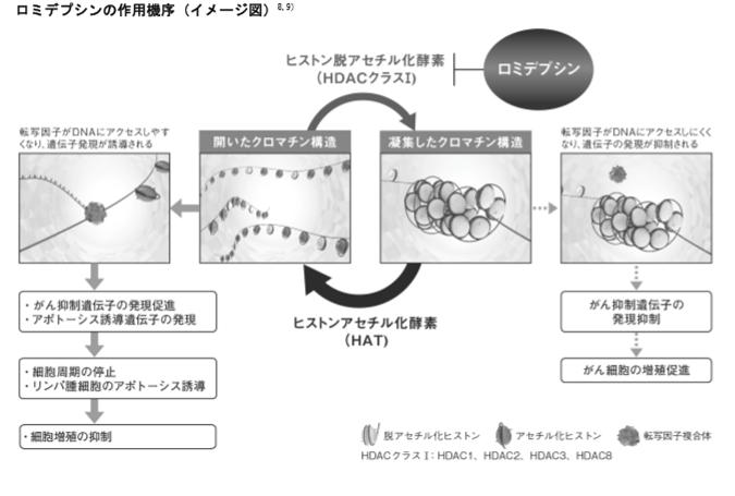 f:id:yashiki5296:20170721235910p:plain