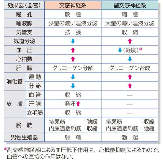 f:id:yashiki5296:20180302013459j:plain
