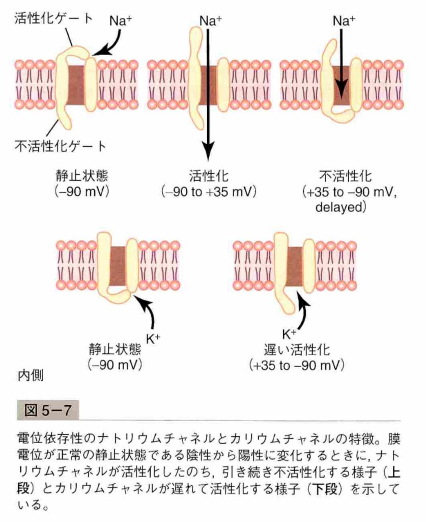 f:id:yashiki5296:20180302025223p:plain
