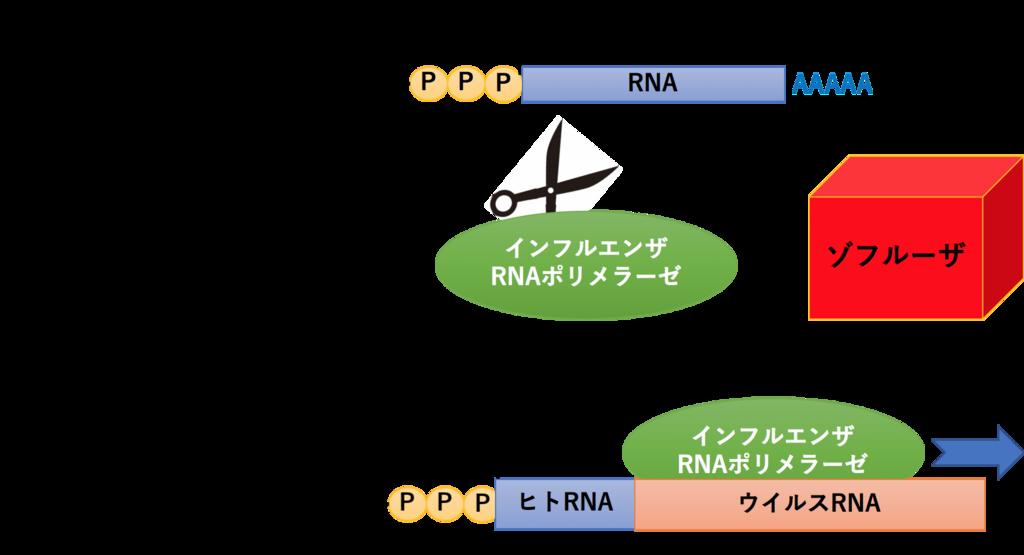 f:id:yashiki5296:20180309012037p:plain