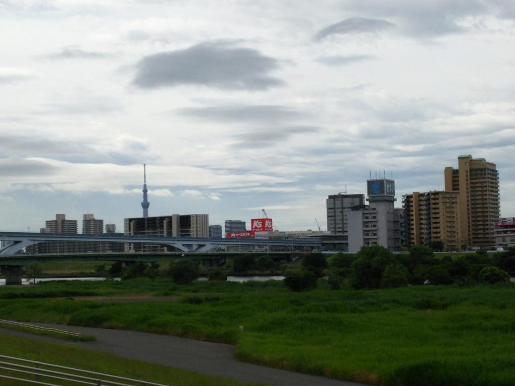 f:id:yasu-i1126:20170608101430j:plain