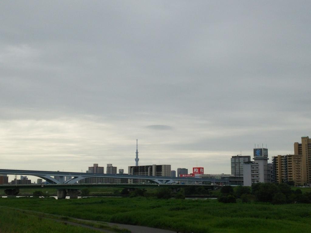 f:id:yasu-i1126:20170803094956j:plain