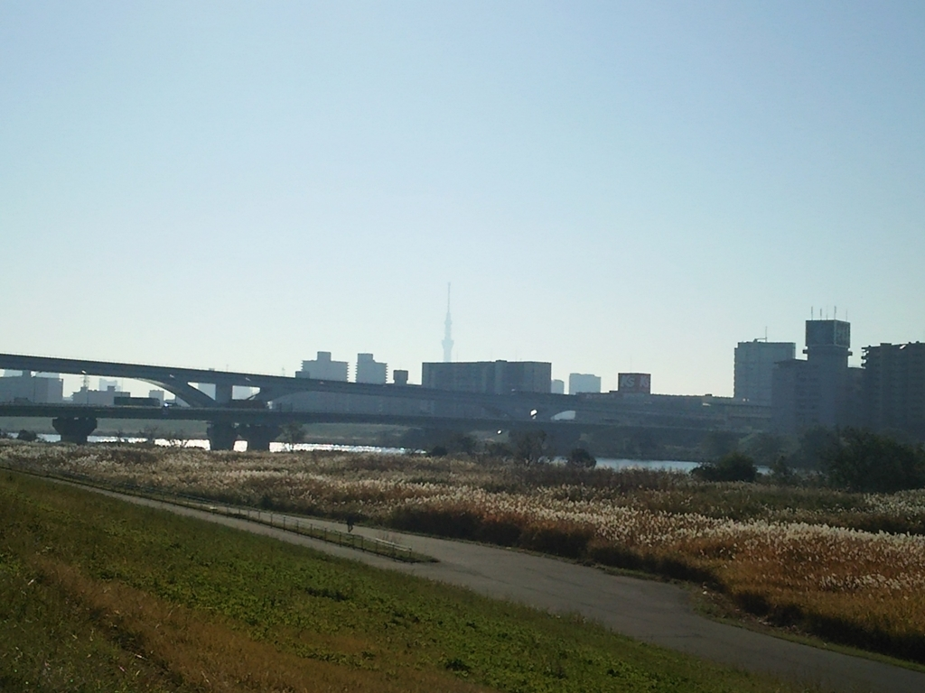 f:id:yasu-i1126:20171107093251j:plain