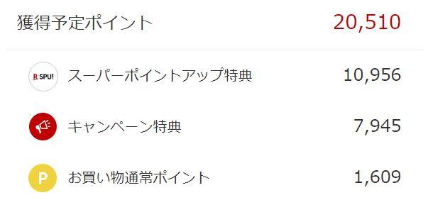 f:id:yasu-yasutan:20190102222153j:plain