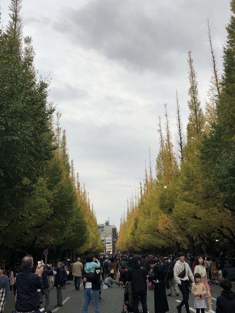 f:id:yasu104kun:20181120211835j:plain
