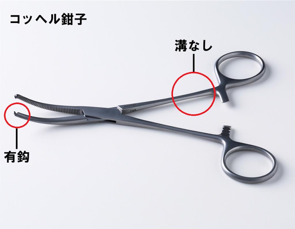 f:id:yasuaroma:20210228085859p:image