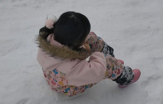 f:id:yasuchin55:20190201111934j:plain