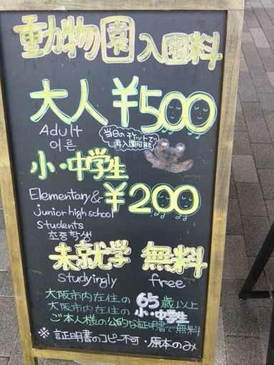 f:id:yasuchin55:20190303213228j:plain