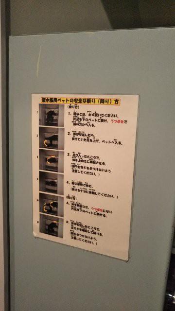 f:id:yasuchin55:20190510212546j:image