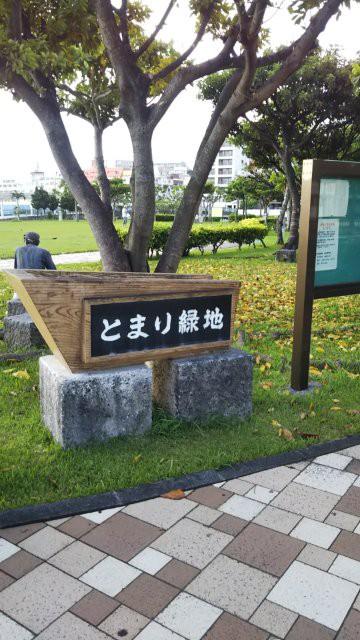 f:id:yasuchin55:20200204122307j:image