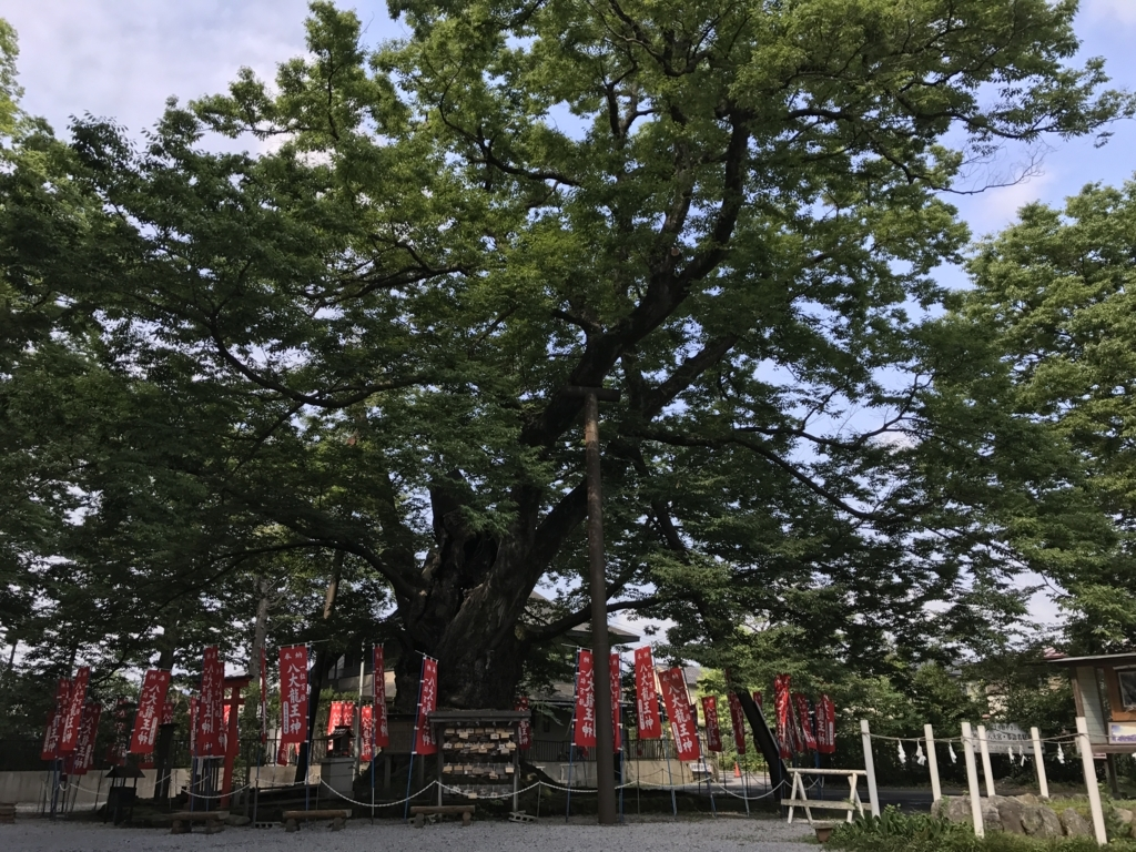 f:id:yasucom:20170810111642j:plain