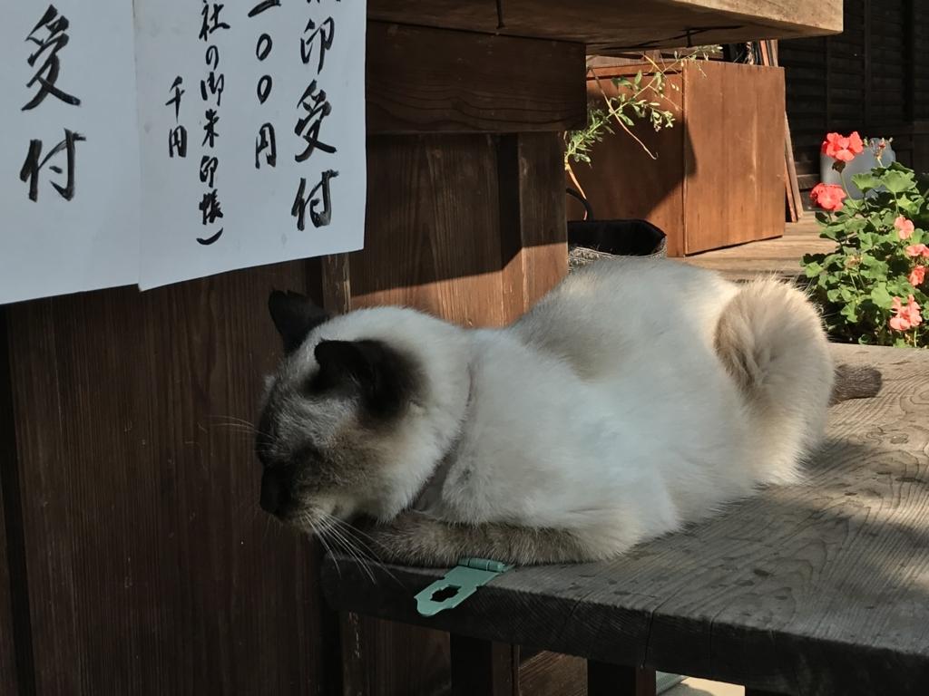 f:id:yasucom:20171113111224j:plain