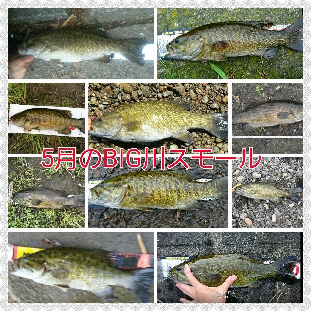 f:id:yasufumi617:20170530203058j:plain
