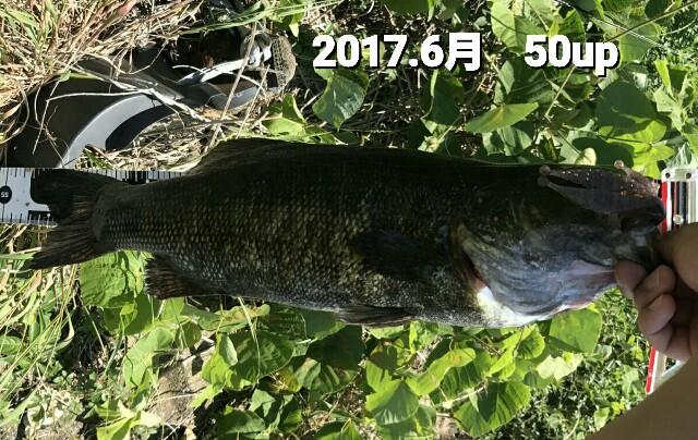 f:id:yasufumi617:20170701093531j:plain