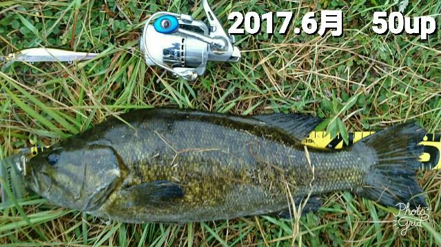 f:id:yasufumi617:20170701093539j:plain