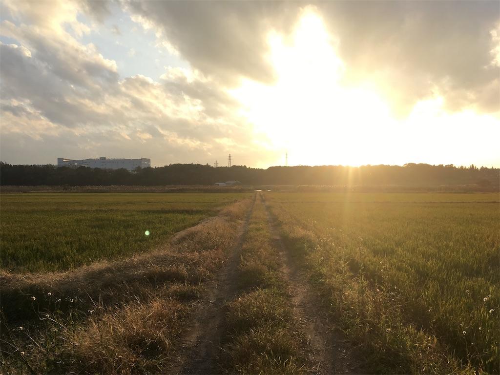 f:id:yasuhidenoguchi:20171110160953j:image