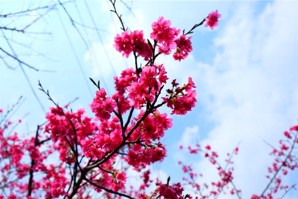 f:id:yasuhidenoguchi:20180212192619j:image