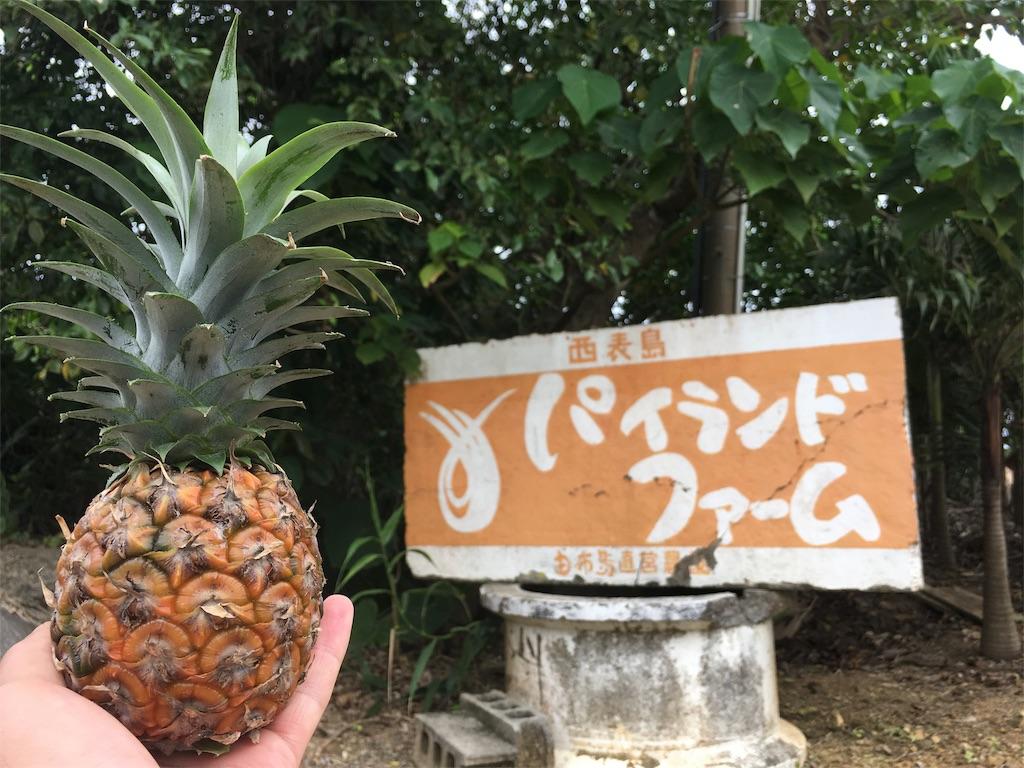 f:id:yasuhidenoguchi:20180308121843j:image