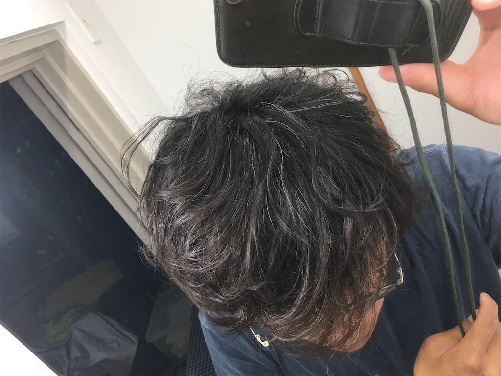 f:id:yasuhidenoguchi:20180404223547j:image