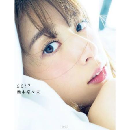 f:id:yasuhiro1038:20170213205841j:plain