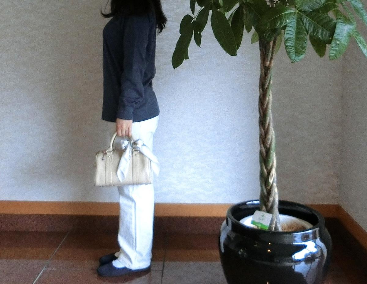 f:id:yasukawafashion:20210127165624j:plain