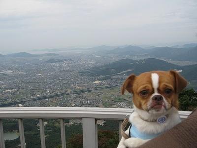 f:id:yasukazu01:20091026220753j:image